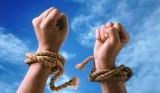 Фонд «Вера»